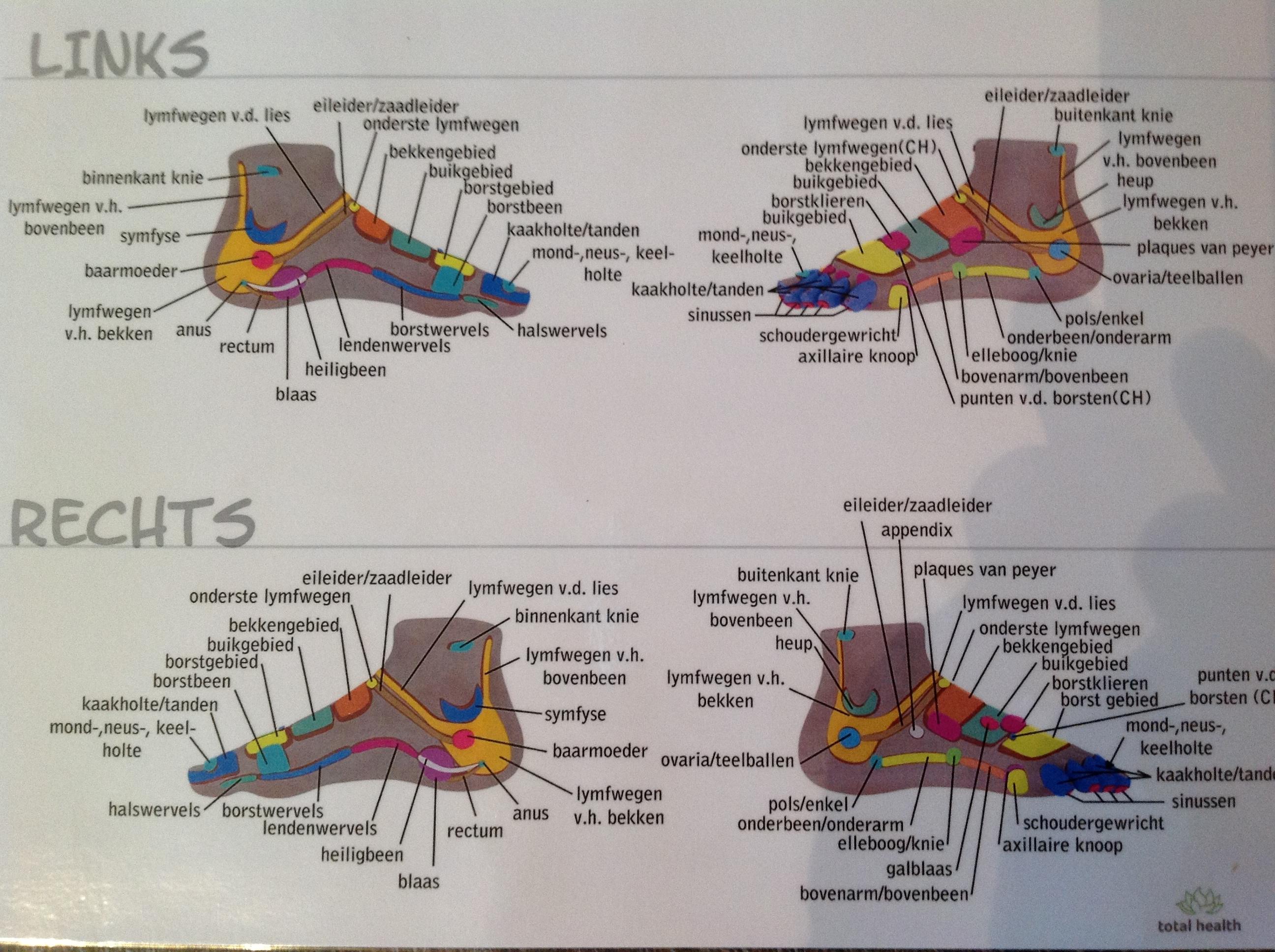 zones zijkant voet